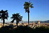 View with palm trees from Piazza Michelangelo on Florence, Toscana, Italy