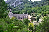 Senanque monastery near Gordes in the Luberon, Provence, France
