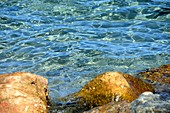 Clear sea water and small rocks in the bay of Saint-Florent, northern Corsica, France