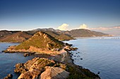 Coast in the evening light west of Ajaccio at Pointe Parata, western Corsica, France