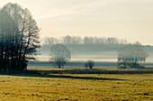 Landscape at Beelitz, Nuthe-Nieplitz Nature Park, State of Brandenburg, Germany
