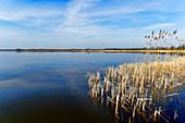 Blankensee, Nuthe-Nieplitz Nature Park, State of Brandenburg, Germany