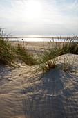 Dünengras, Segler in der Lagune, Westspitze Insel Spiekeroog, Wattenmeer, Ostfriesland, Niedersachsen, Deutschland