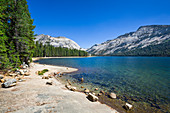 Tenaya Lake im Osten des Yosemite Nationalparks, USA\n