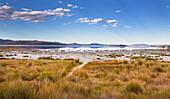 Mono Basin on the east bank of Mono Lake, California, USA