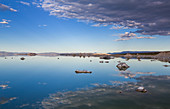 On the east bank of Mono Lake in summer, California, USA