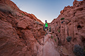 Woman hikes through the Valley of Fire at dusk, USA