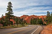 Felsen mit Straße am Red Canyon in Utah, USA\n