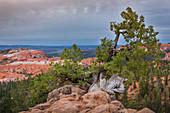 Bryce Canyon at dusk, USA