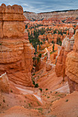 Rock towers hoodos in Bryce Canyon National Park, USA