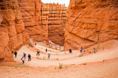 Tourists at Wall Street Canyon in Bryce Canyon National Park, USA
