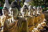 Buddha statues at Maha Bodhi Tahtaung Monastery, Monywa Township, Sagaing Region, Myanmar, Asia