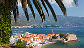 View over crowded beach to the Old Town (Stari Grad), and Budva Bay, palm-tree in foreground, Budva, Montenegro, Europe
