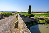 Bicycle path along the Canal du Midi, Occitania, France