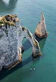 France, Seine Maritime, Etretat, Cote d'Abatre, arch and needle (aerial view)