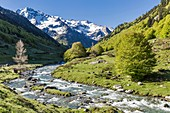 France, Pyrenees Atlantiques, Fabreges, Ossau valley near the Pourtalet pass and Lurien peak