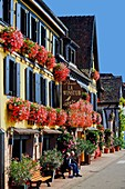 France, Bas Rhin, Wine Route, Itterswiller, facade of houses, hotel restaurant Arnold, windows with flowers