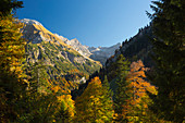 Autumn in the Hinterstein valley near Bad Hindelang, Allgäu, Bavaria, Germany