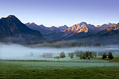 Morning mood with fog, view over the alpine meadows, near Oberstdorf, Allgäu, Bavaria, Germany