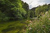 Pegnitz Valley, Frankenalb, Franconian Jura, Franconia, Bavaria, Germany