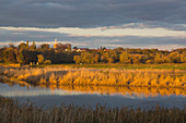 View over the Oder to the village of Czelin in Poland, Oderbruch, Brandenburg, Germany