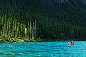 Canoeists on the Yukon River in front of a pine forest. Yukon River, Yukon Territory, Canada