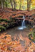 France, Isere, Parc Naturel Regional du Vercors (Natural regional park of Vercors), Trieves, Richardiere, the brook of Aupet flows near Mont Aiguille