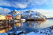 The sun painting the houses overlooking the port of Henningsvaer early in the morning, Lofoten Islands, Arctic, Norway, Scandinavia, Europe