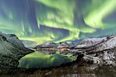 Nordlichter (Aurora Borealis) und Sterne beleuchten die schneebedeckten Gipfel im kalten Meer, Bergsbotn, Senja, Troms, Norwegen, Skandinavien, Europa