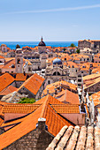 Terracotta tile rooftop view of Dubrovnik Old Town, UNESCO World Heritage Site, Dubrovnik, Dalmatian Coast, Croatia, Europe