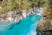 The Blue Pools of Haast Pass, Mount Aspiring National Park, UNESCO World Heritage Site, West Coast, South Island, New Zealand, Pacific
