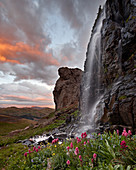 Alpine waterfall with wildflowers at sunset, San Juan National Forest, Colorado, United States of America, North America