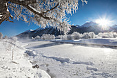 Frost on trees frame the snowy landscape and frozen river, Inn, Celerina, Maloja, Canton of Graubunden, Engadine, Switzerland, Europe
