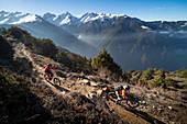 Mountain biking along a Enduro style single track trail in the Nepal Himalayas near the Langtang region, Nepal, Asia