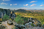 Felsturm Brosinnadel im Elbsandsteingebirge, Untere Häntzschelstiege, Elbsandsteingebirge, Nationalpark Sächsische Schweiz, Sächsische Schweiz, Sachsen, Deutschland