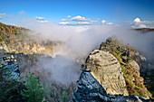 Nebelstimmung mit Felstürmen, Großer Winterberg, Elbsandsteingebirge, Nationalpark Sächsische Schweiz, Sächsische Schweiz, Sachsen, Deutschland