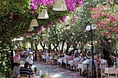 Tavernen unter blühendem Oleander und Bougainvillea-Büschen in der Nafklirou-Strasse, Stadt Kos, Kos, Dodekanes