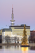 Christmas tree on the Inner Alster, Old Town, Free Hanseatic City of Hamburg, Northern Germany, Germany, Europe