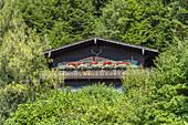Bauernhaus im Wald am Berg, Urfeld am Walchensee, Oberbayern, Bayern, Süddeutschland, Deutschland