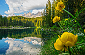 Karersee, natural monument under the rose garden, in the South Tyrolean Dolomites, UNESCO World Natural Heritage, in Eggental, Italy