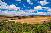 Landscape at Stanford, GardenRoute, South Africa, Africa