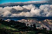 Jonkershoek Nature Reserve, Stellenbosch, Cape Winelands, South Africa, Africa