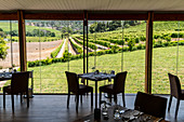 Groot Constantia Winery restaurant, Constantia, Cape Town, South Africa, Africa