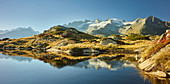 Geisshorn nahe Bettmeralp, Wallis, Schweiz