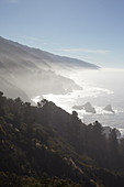 Coastal panorama in the fog. Highway 1, California, USA