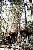 Cottage in Yosemite Park. California, United States.