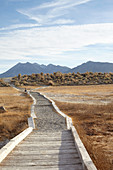 Child on a path through steppe landscape in the Eastern Sierra, California, USA