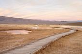 Path through steppe landscape at dusk in the Eastern Sierra, California, USA