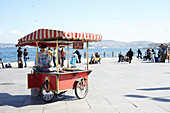 Sweet chestnut stand in public square on the banks of the Bosphorus, Istanbul, Turkey