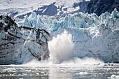 Stück Eis, Gletscher kalbt, Johns Hopkins-Gletscher, Glacier Bay National Park, Alaska, USA